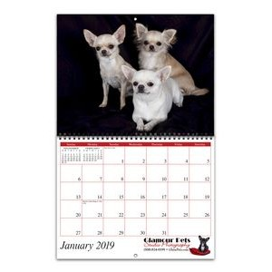 Promote.Pet� Reflections Wire-bound 12-Month/13-Photo Wall Calendar